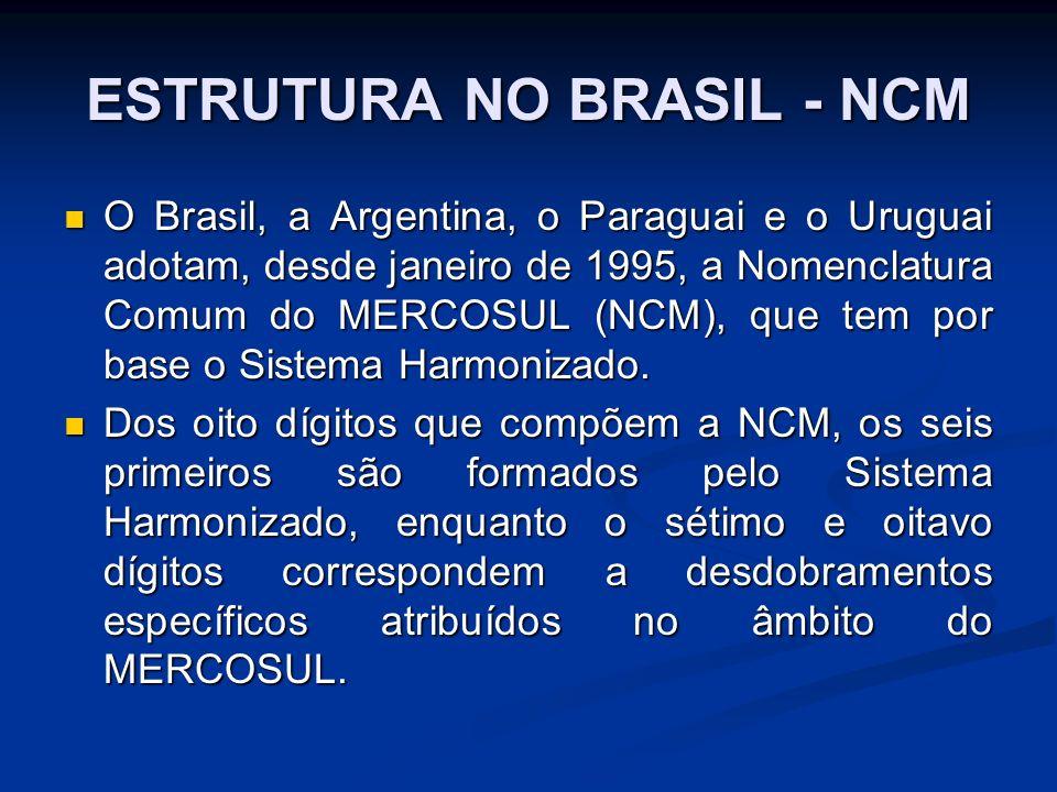 ESTRUTURA NO BRASIL - NCM