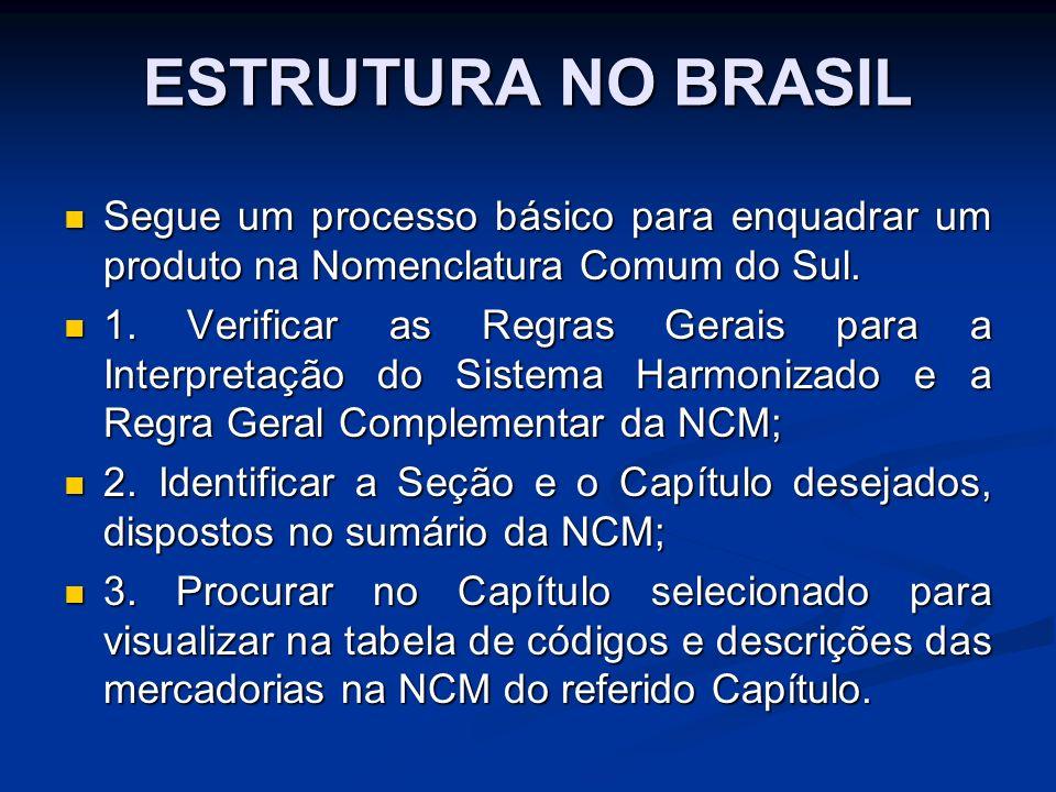 ESTRUTURA NO BRASIL Segue um processo básico para enquadrar um produto na Nomenclatura Comum do Sul.