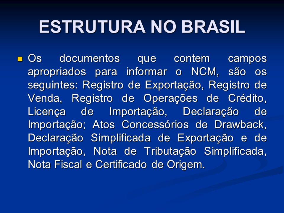 ESTRUTURA NO BRASIL