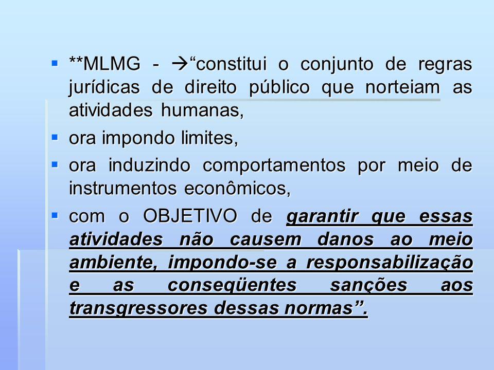 **MLMG -  constitui o conjunto de regras jurídicas de direito público que norteiam as atividades humanas,