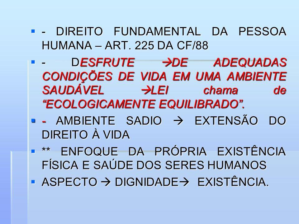 - DIREITO FUNDAMENTAL DA PESSOA HUMANA – ART. 225 DA CF/88