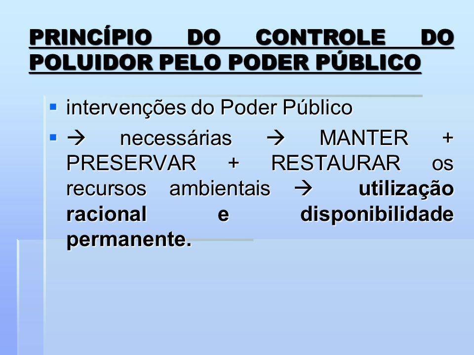 PRINCÍPIO DO CONTROLE DO POLUIDOR PELO PODER PÚBLICO