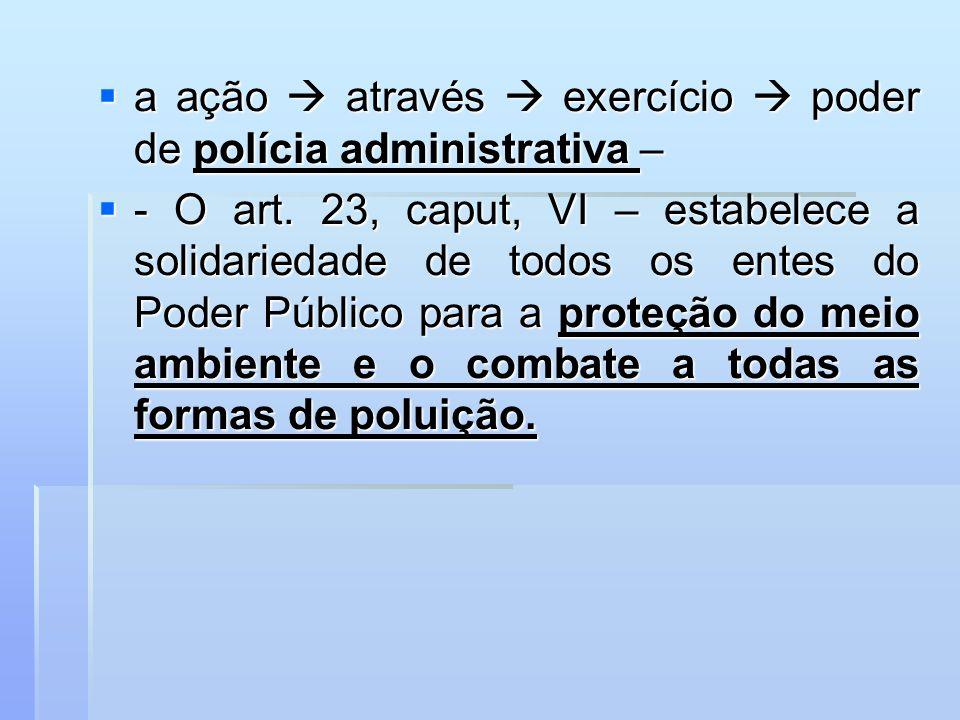 a ação  através  exercício  poder de polícia administrativa –