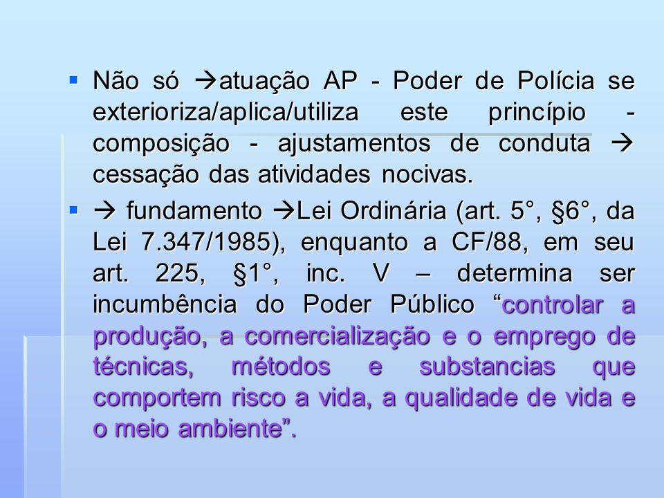Não só atuação AP - Poder de Polícia se exterioriza/aplica/utiliza este princípio - composição - ajustamentos de conduta  cessação das atividades nocivas.