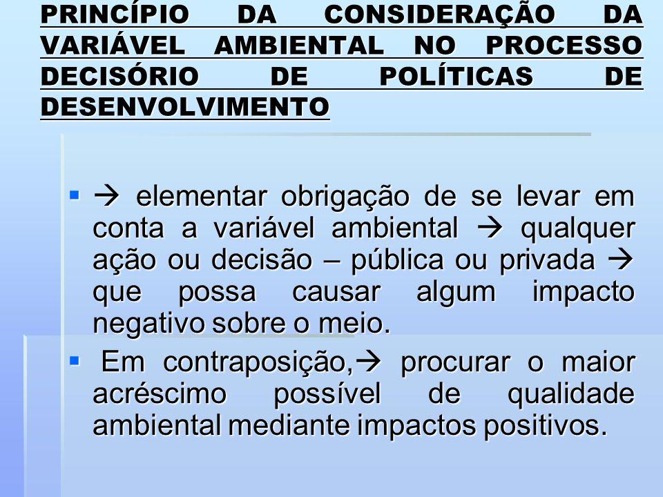 PRINCÍPIO DA CONSIDERAÇÃO DA VARIÁVEL AMBIENTAL NO PROCESSO DECISÓRIO DE POLÍTICAS DE DESENVOLVIMENTO