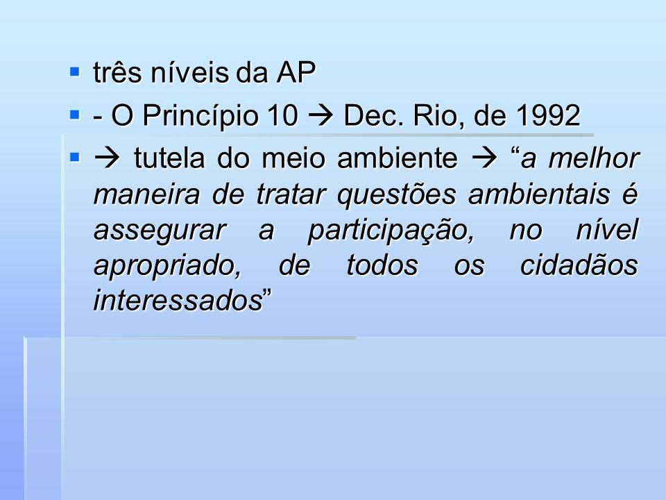 três níveis da AP - O Princípio 10  Dec. Rio, de 1992.