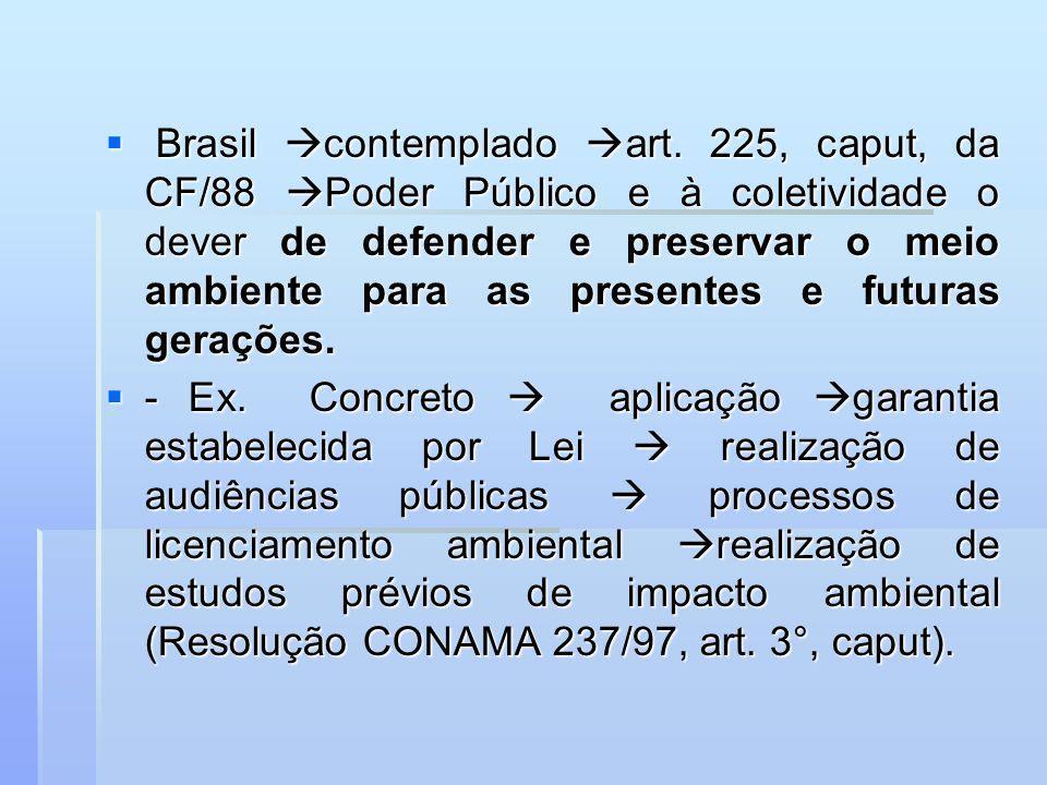 Brasil contemplado art
