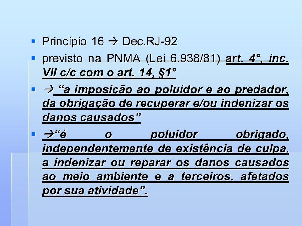 Princípio 16  Dec.RJ-92 previsto na PNMA (Lei 6.938/81) art. 4°, inc. VII c/c com o art. 14, §1°