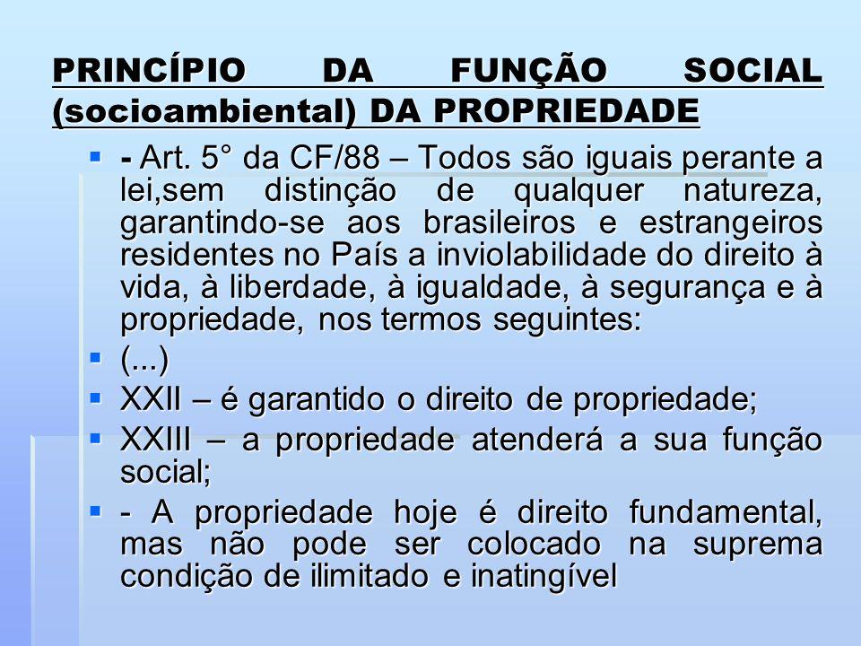 PRINCÍPIO DA FUNÇÃO SOCIAL (socioambiental) DA PROPRIEDADE