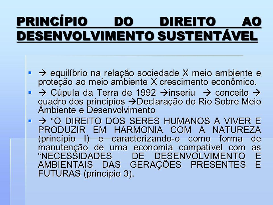 PRINCÍPIO DO DIREITO AO DESENVOLVIMENTO SUSTENTÁVEL