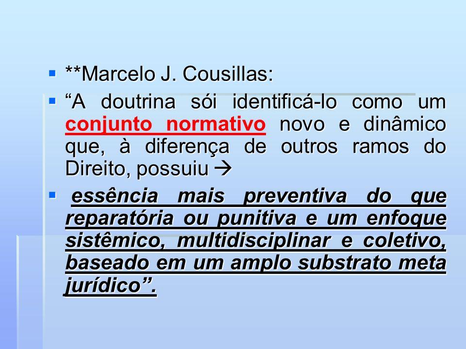 **Marcelo J. Cousillas: