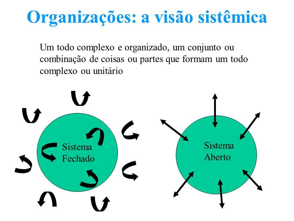 Organizações: a visão sistêmica