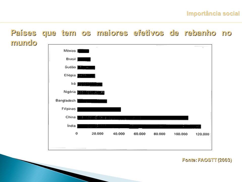 Países que tem os maiores efetivos de rebanho no mundo