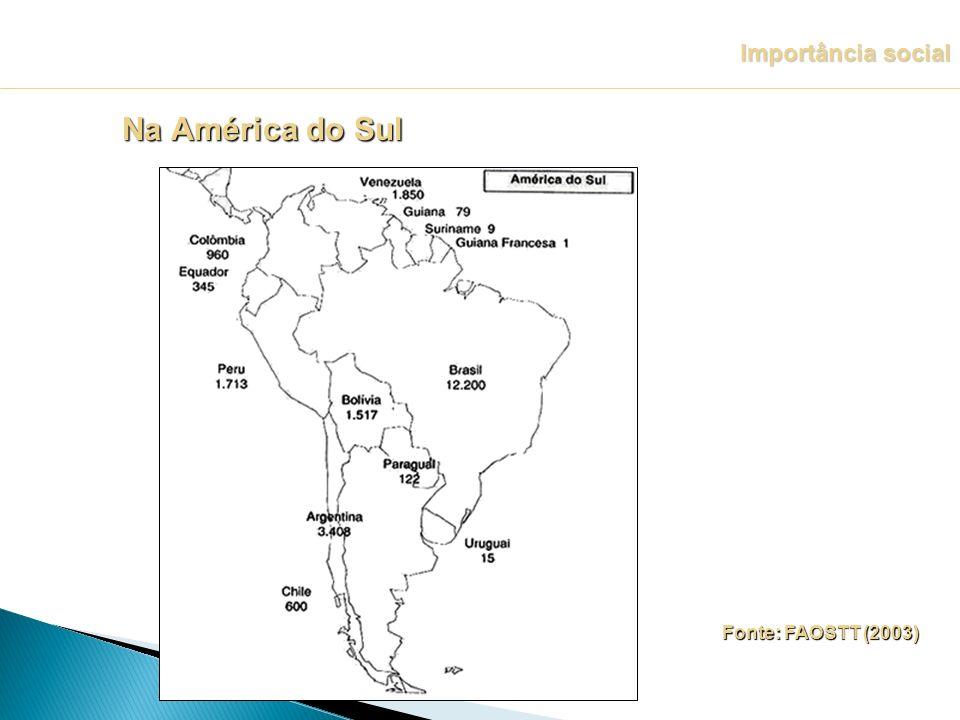 Importância social Na América do Sul Fonte: FAOSTT (2003)