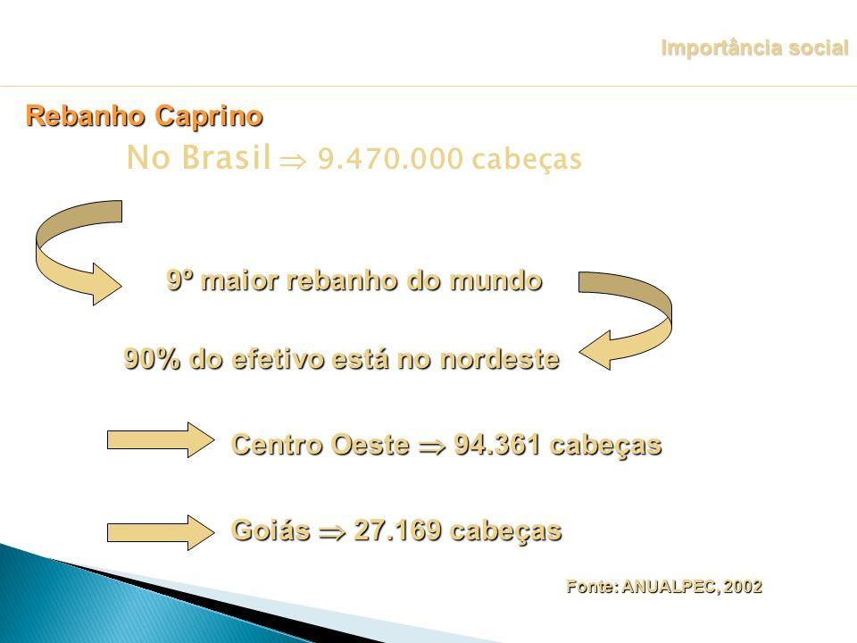 No Brasil  9.470.000 cabeças Rebanho Caprino