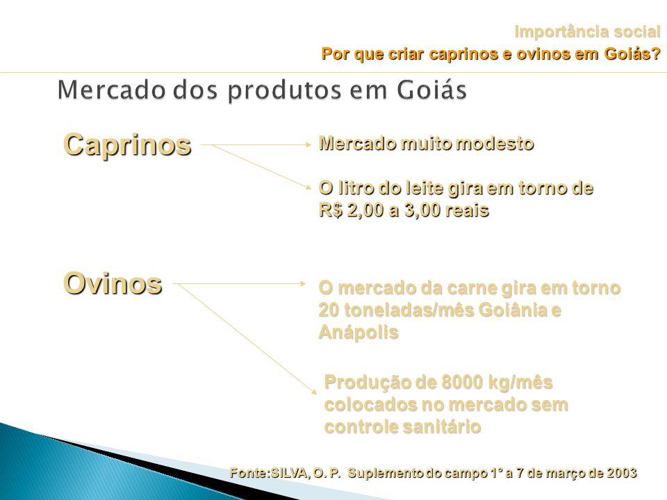 Mercado dos produtos em Goiás