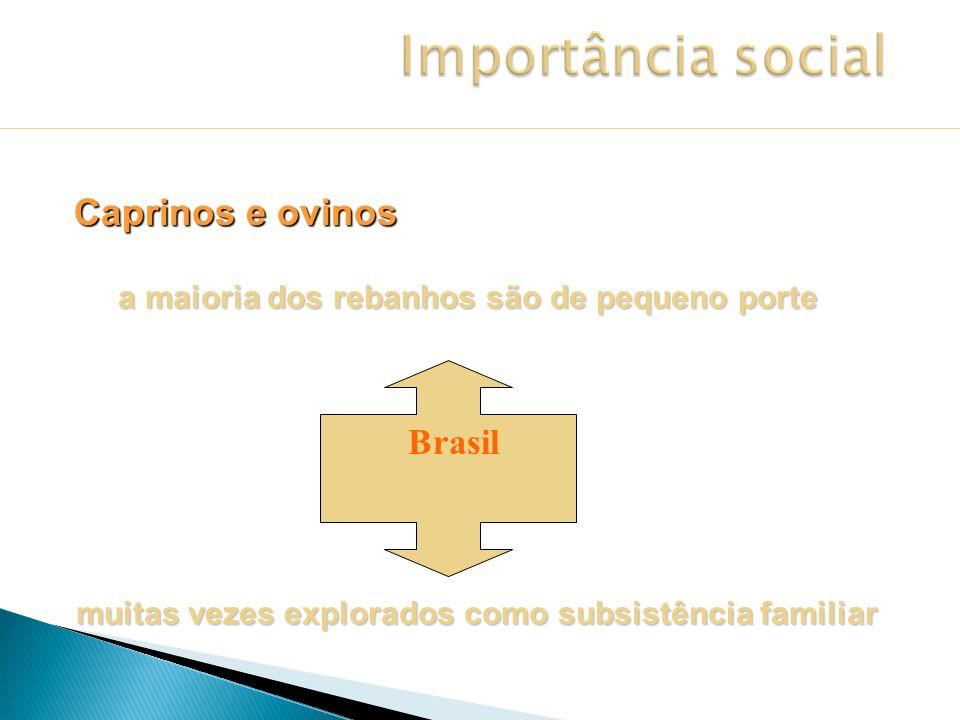 Importância social Caprinos e ovinos Brasil