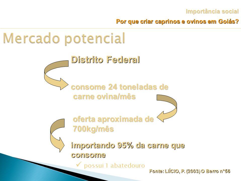 Mercado potencial Distrito Federal consome 24 toneladas de