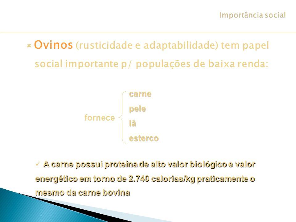 Importância social  Ovinos (rusticidade e adaptabilidade) tem papel social importante p/ populações de baixa renda: