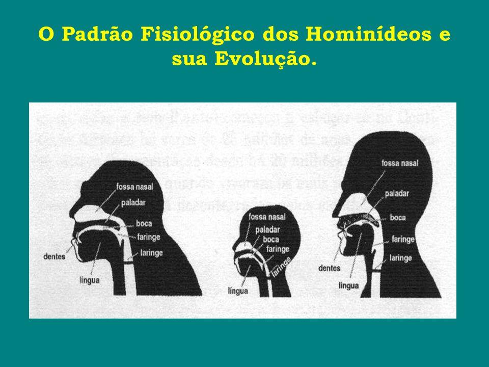 O Padrão Fisiológico dos Hominídeos e sua Evolução.