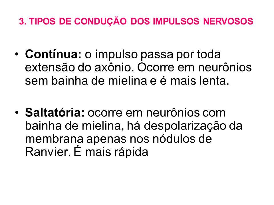 3. TIPOS DE CONDUÇÃO DOS IMPULSOS NERVOSOS
