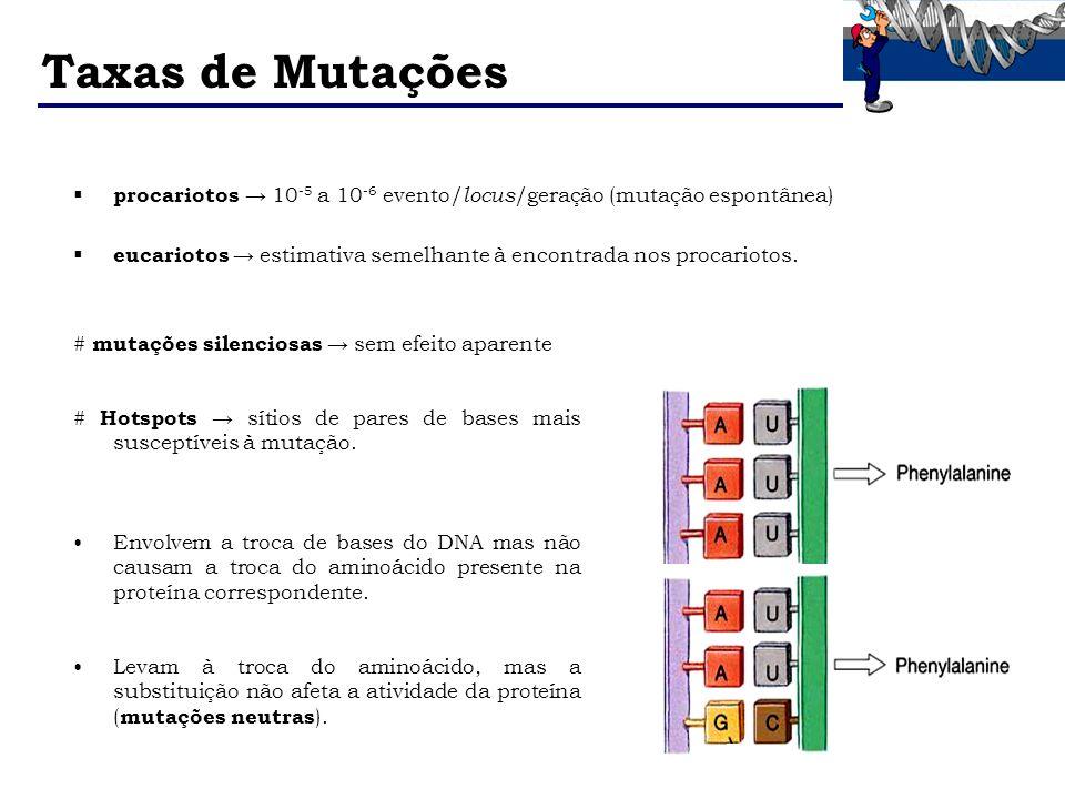 Taxas de Mutações procariotos → 10-5 a 10-6 evento/locus/geração (mutação espontânea)