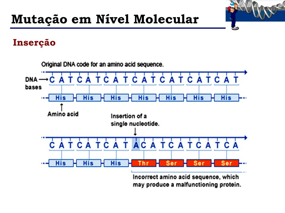 Mutação em Nível Molecular