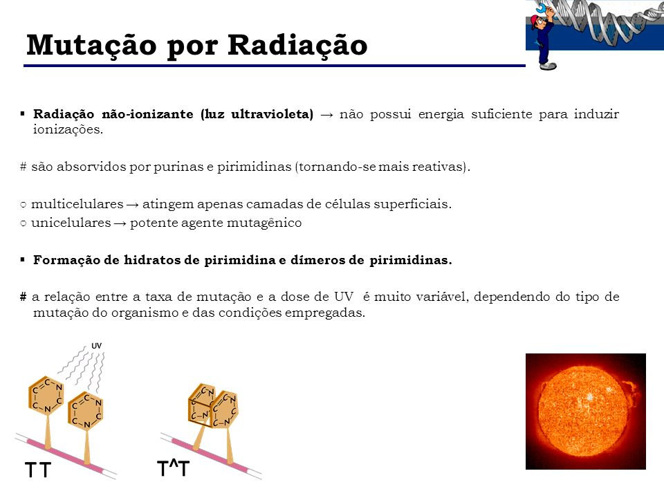 Mutação por Radiação Radiação não-ionizante (luz ultravioleta) → não possui energia suficiente para induzir ionizações.