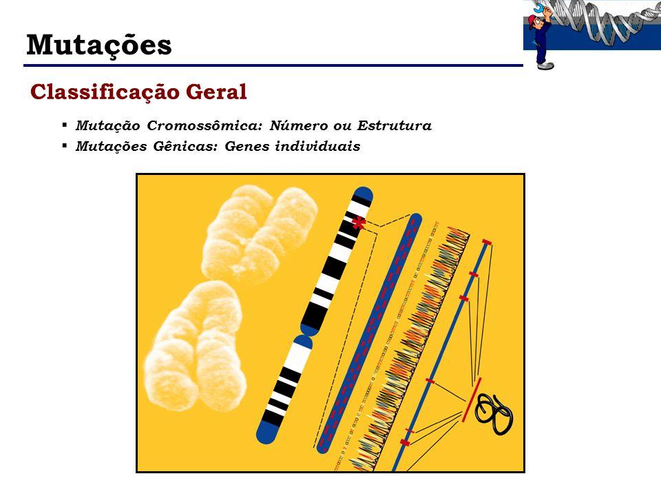 Mutações Classificação Geral Mutação Cromossômica: Número ou Estrutura