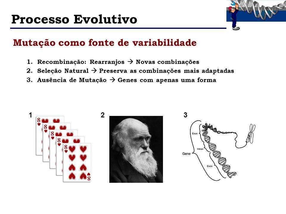 Processo Evolutivo Mutação como fonte de variabilidade 1 2 3