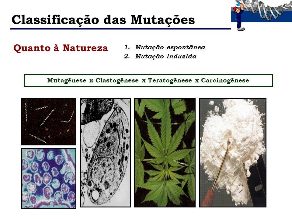 Mutagênese x Clastogênese x Teratogênese x Carcinogênese