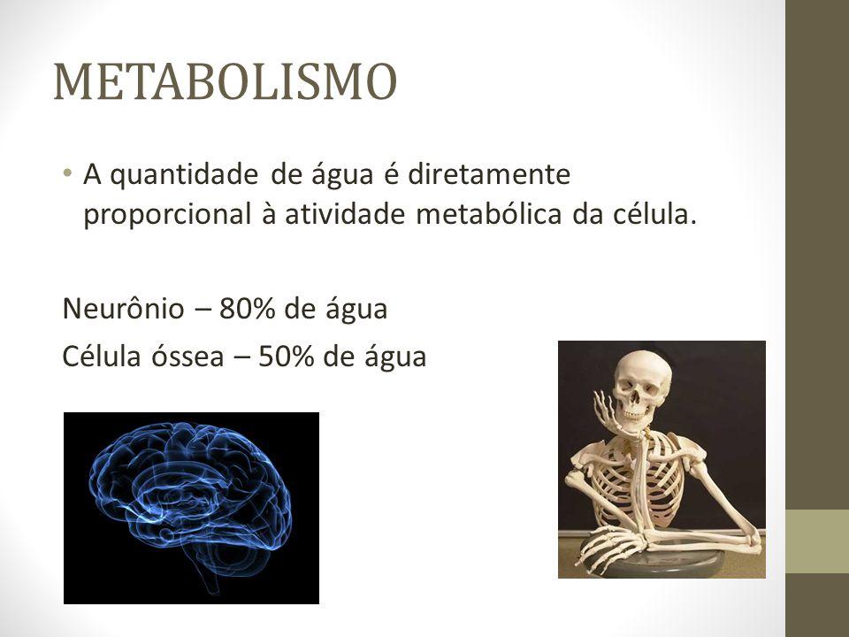 METABOLISMOA quantidade de água é diretamente proporcional à atividade metabólica da célula. Neurônio – 80% de água.