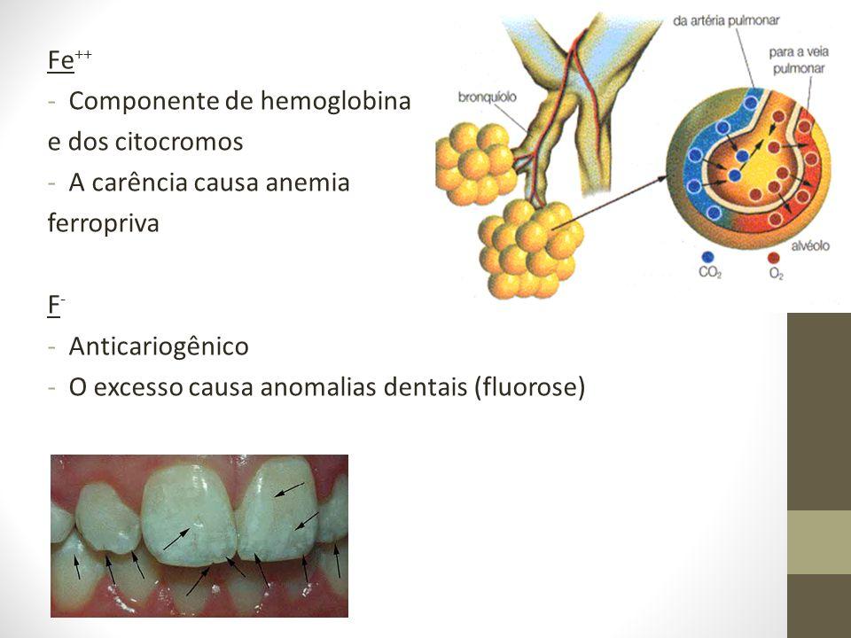 Fe++ Componente de hemoglobina. e dos citocromos. A carência causa anemia. ferropriva. F- Anticariogênico.