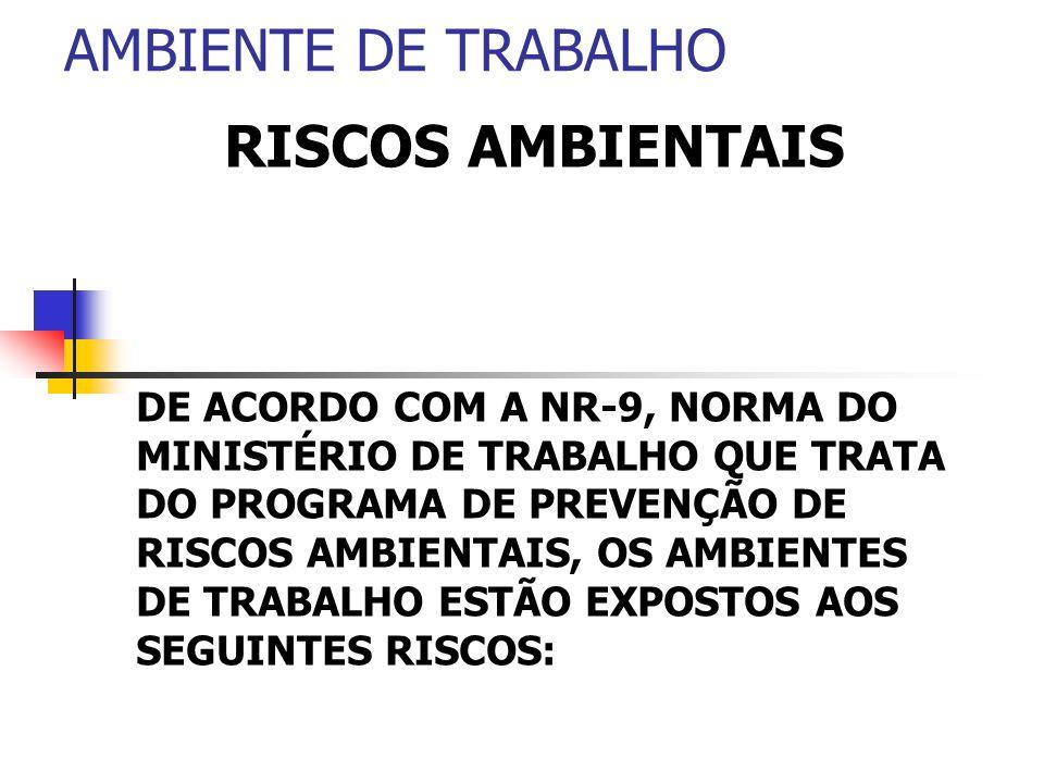 AMBIENTE DE TRABALHO RISCOS AMBIENTAIS