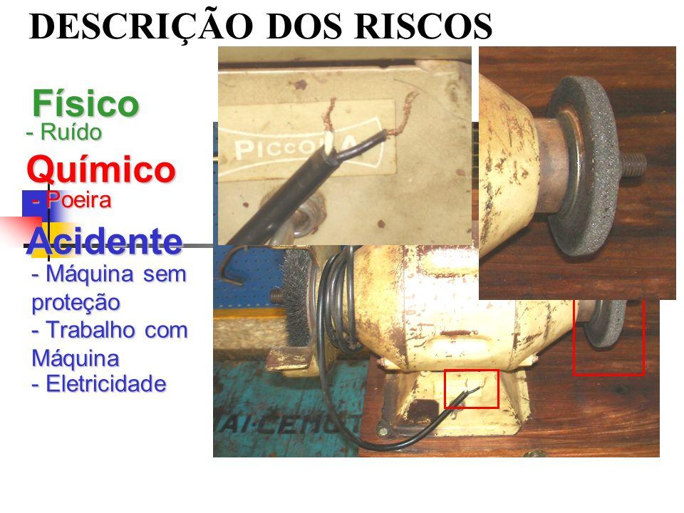 DESCRIÇÃO DOS RISCOS Físico Químico Acidente - Ruído - Poeira