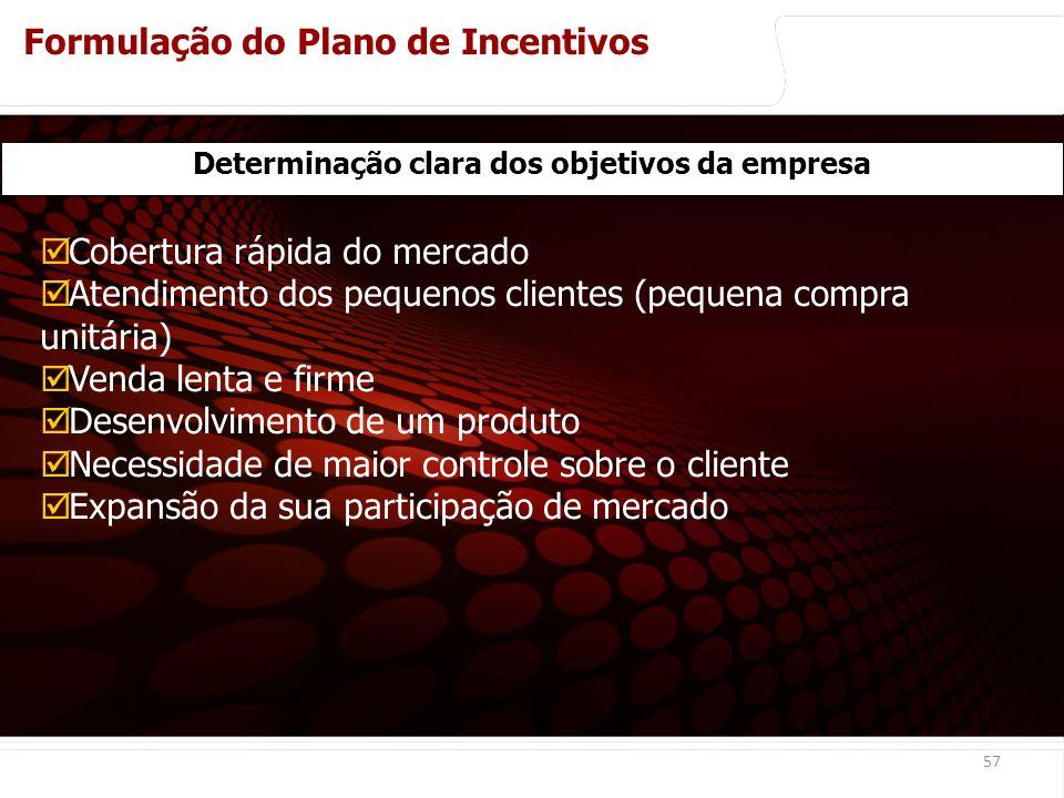 Determinação clara dos objetivos da empresa