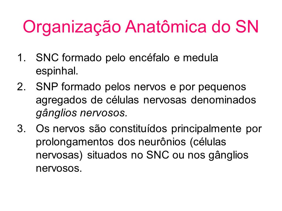 Organização Anatômica do SN