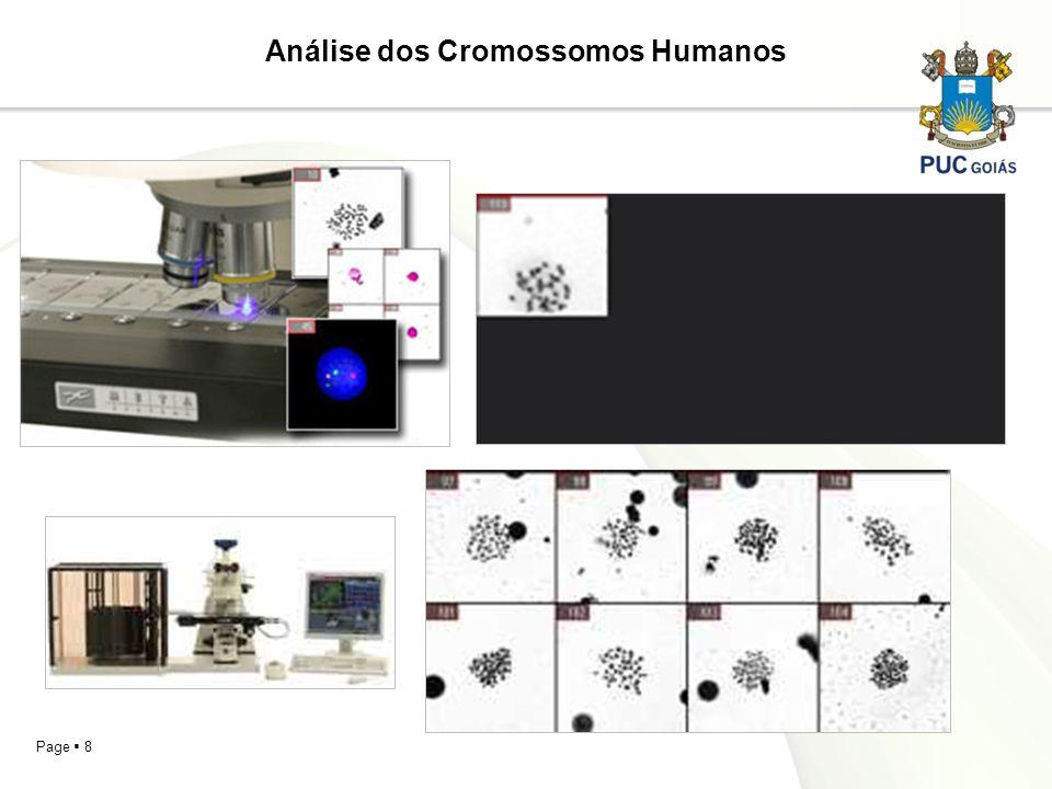 Análise dos Cromossomos Humanos