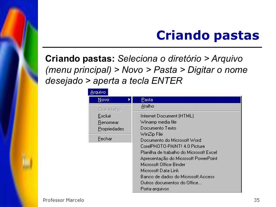 Criando pastasCriando pastas: Seleciona o diretório > Arquivo (menu principal) > Novo > Pasta > Digitar o nome desejado > aperta a tecla ENTER.