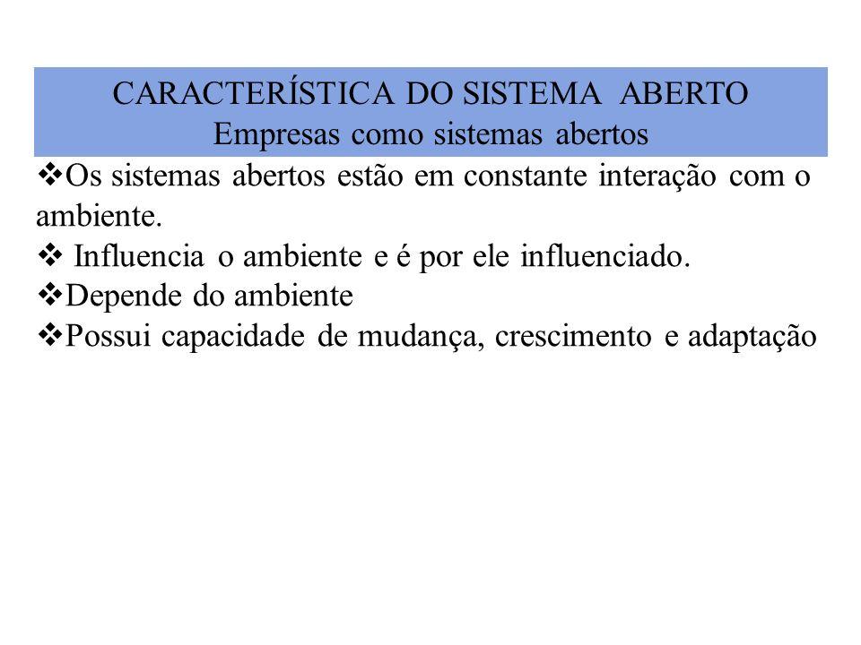 CARACTERÍSTICA DO SISTEMA ABERTO Empresas como sistemas abertos