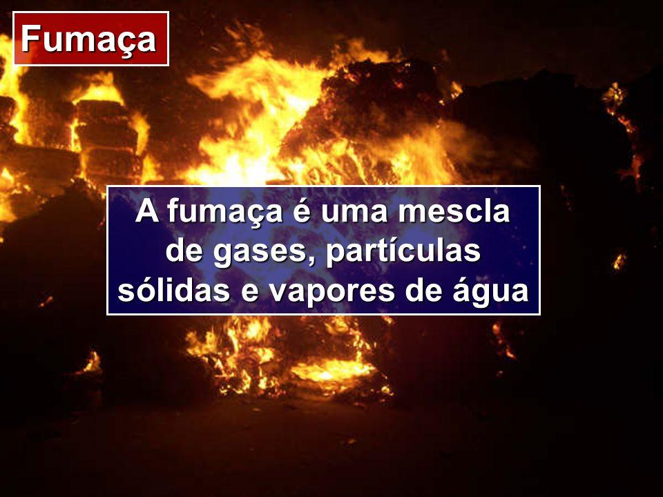 A fumaça é uma mescla de gases, partículas sólidas e vapores de água