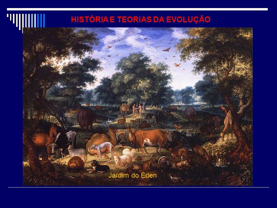 HISTÓRIA E TEORIAS DA EVOLUÇÃO