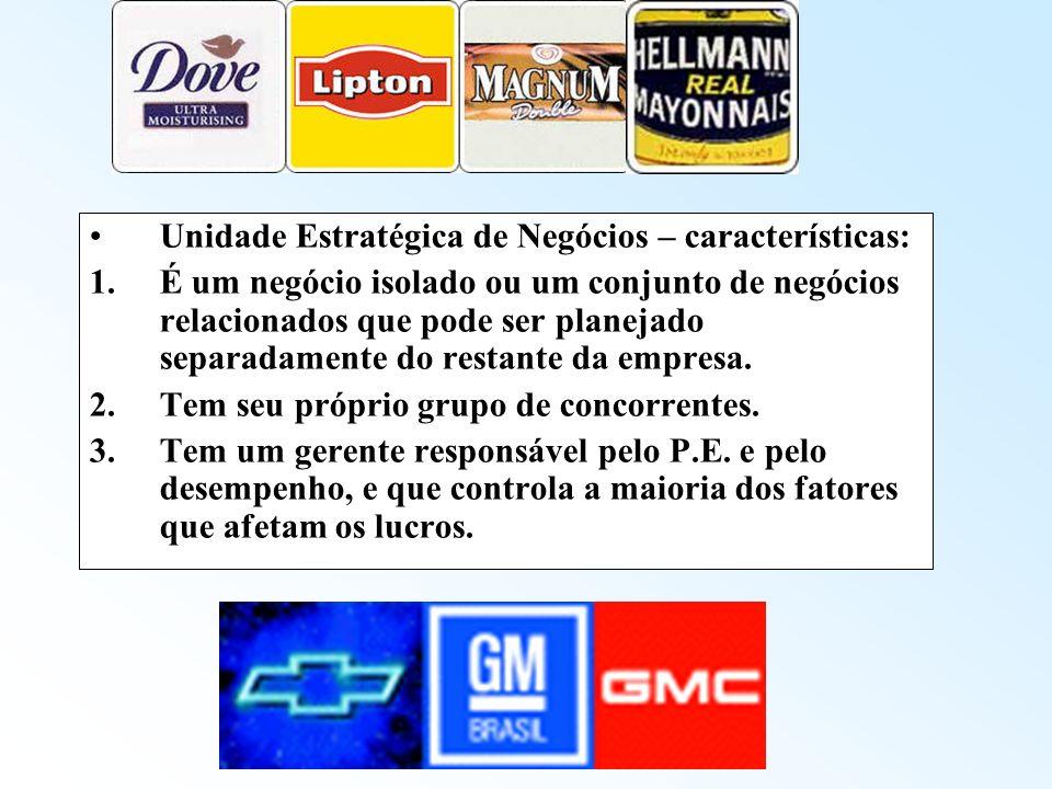 Unidade Estratégica de Negócios – características: