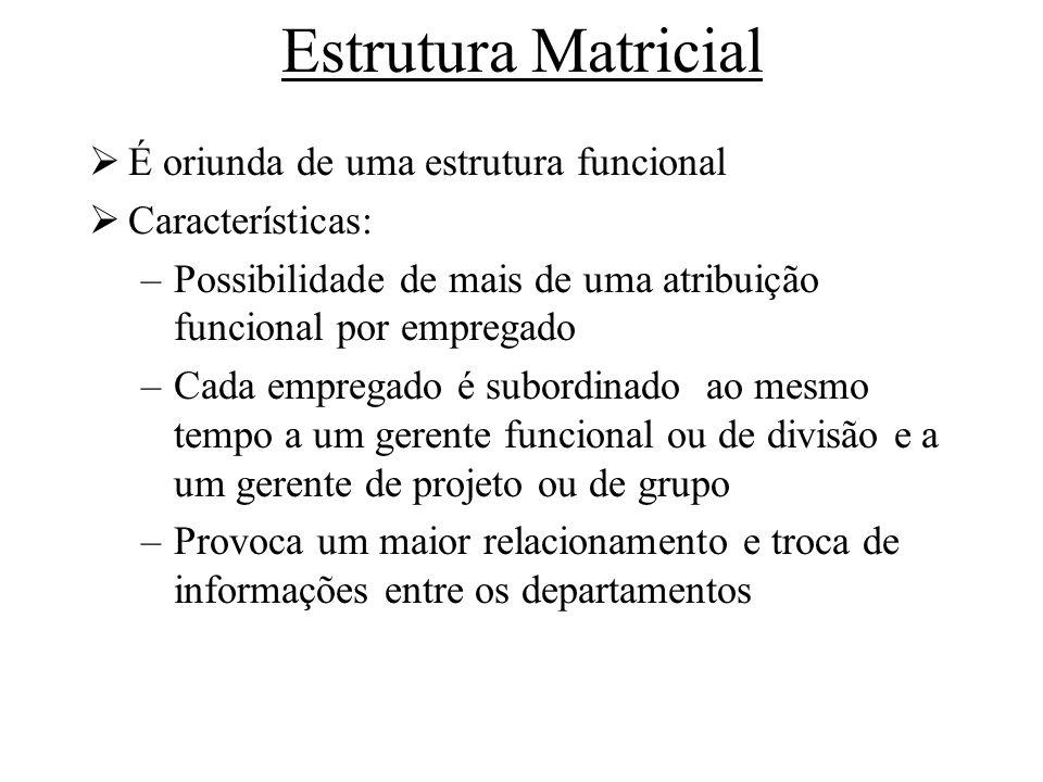 Estrutura Matricial É oriunda de uma estrutura funcional