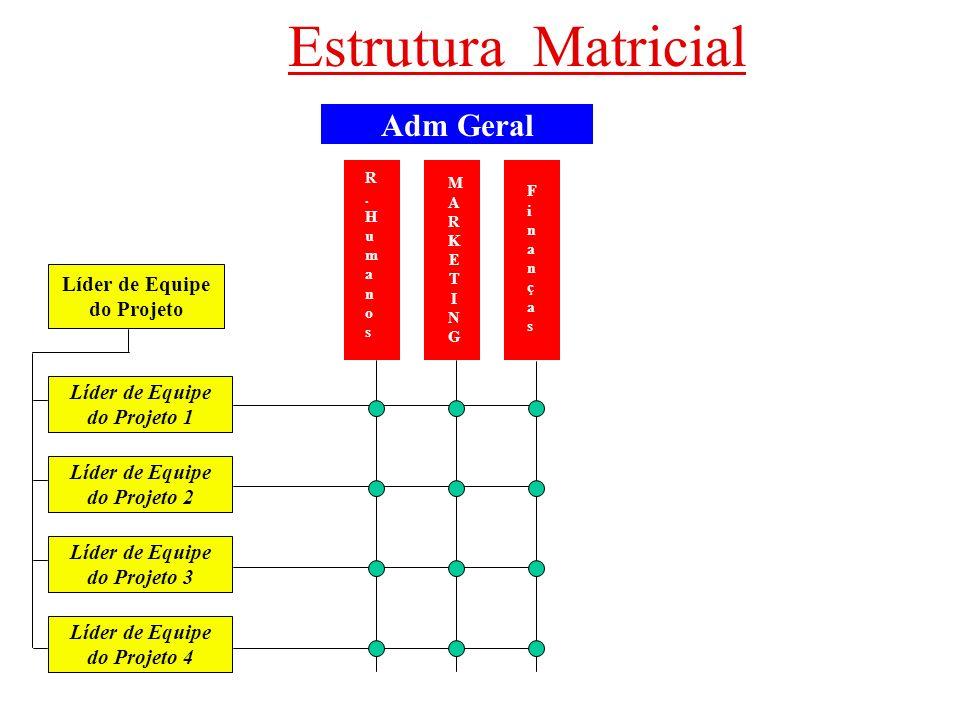 Estrutura Matricial Adm Geral Líder de Equipe do Projeto