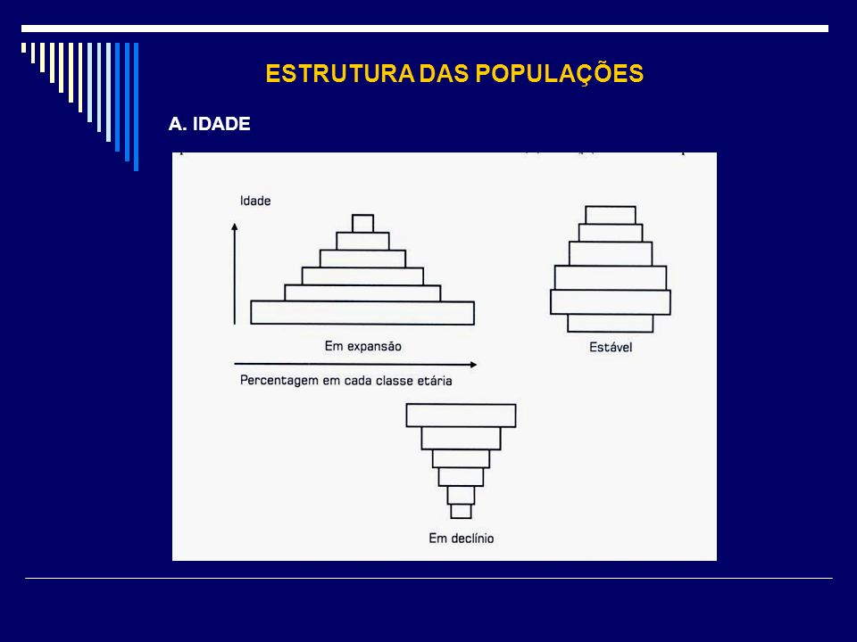 ESTRUTURA DAS POPULAÇÕES