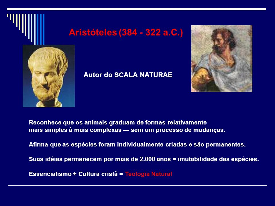 Aristóteles (384 - 322 a.C.) Autor do SCALA NATURAE