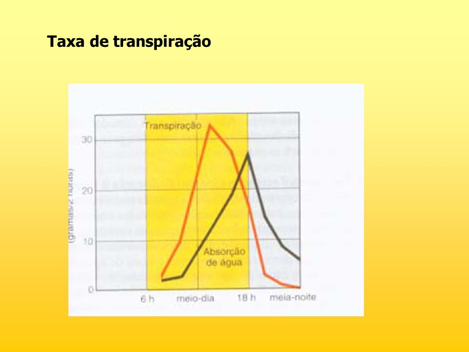 Taxa de transpiração