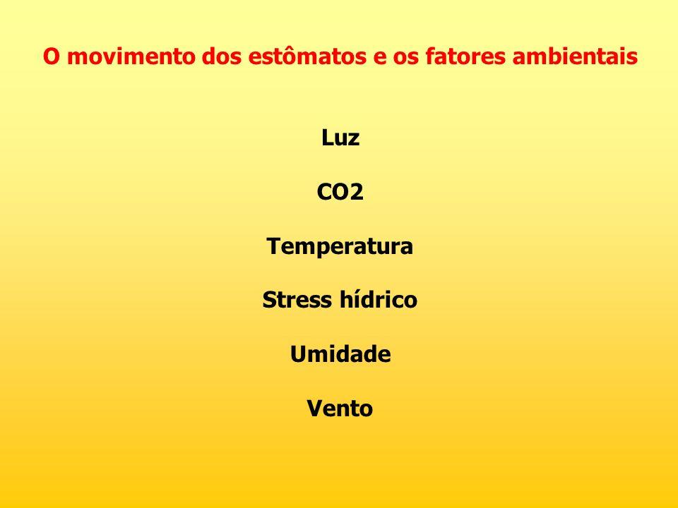 O movimento dos estômatos e os fatores ambientais