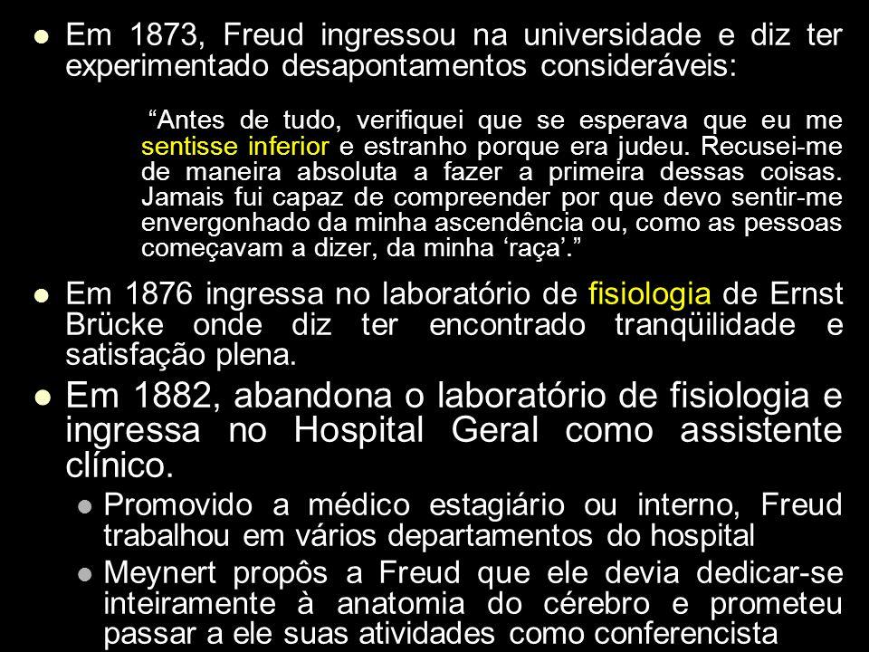Em 1873, Freud ingressou na universidade e diz ter experimentado desapontamentos consideráveis: